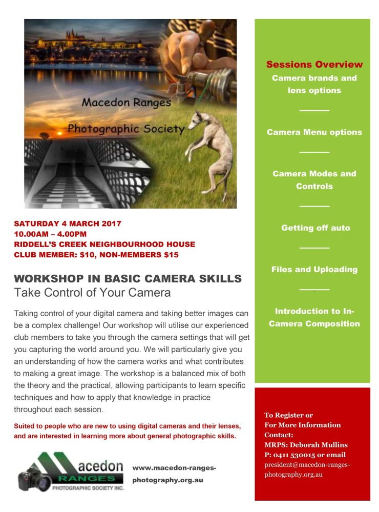 camera-basics-workshop