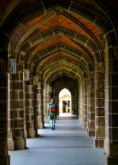 cloisters of learning