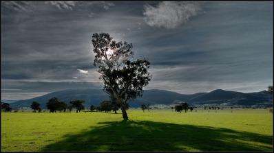 corryong landscape