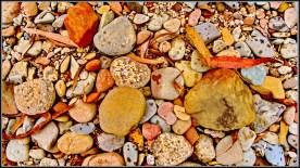 crystal creek rocks n leaves