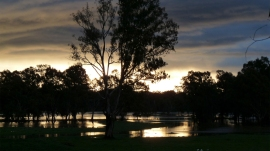 flooded_paddocks