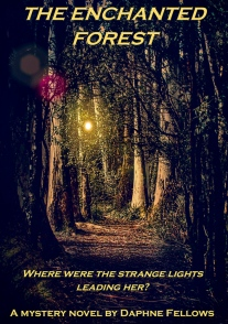 highly commended- the enchanted forest