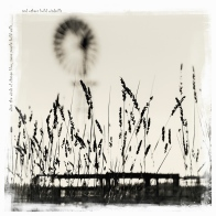 openmrps_windmills