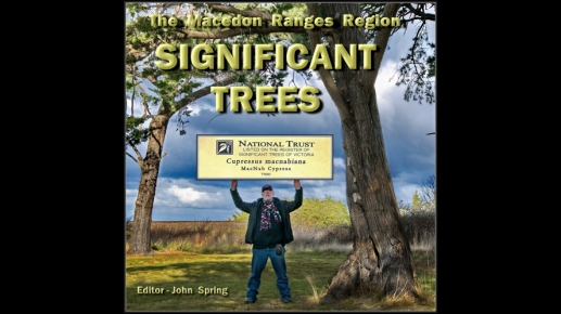 significant trees