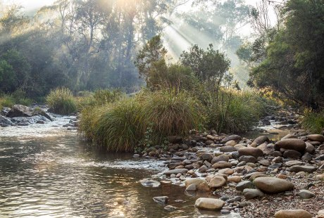 06-2019_08_A019_OPEN_Sunbeams over the creek