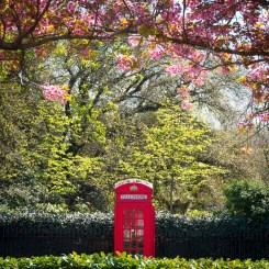 2019_06_A001 Open Subject London Spring